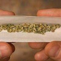 Сколько грамм в одном косяке конопли выращивание удобрение для марихуаны